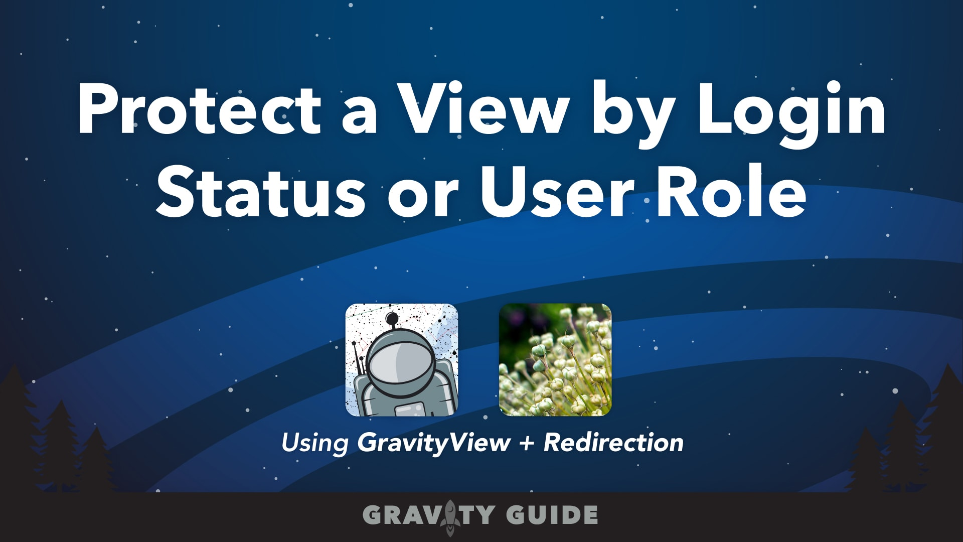 Protect a View by Login Status or User Role